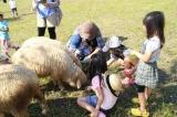 ローザンベリー多和田へ行ってきた!手作り体験や動物とのふれあい | 滋賀県の観光と子どもの遊び場250ヶ所...