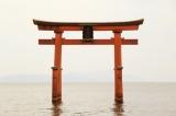 白髭神社(高島市)湖上の赤い鳥居がシンボル