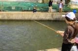 南郷水産センター(大津市)アユ釣りをして、その場で炭焼き | 滋賀県の観光と子どもの遊び場250ヶ所以上の...