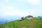 伊吹山(米原市)滋賀県で一番高い山へ!
