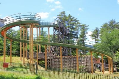 グリーンパーク想い出の森へ行ってきた!(高島市)丸太遊具施設の大型遊具