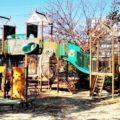 込田公園へ行ってきた!(草津市)草津市役所に隣接する大型遊具のある公園