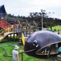 びわ湖こどもの国(高島市)ナマズの大型遊具や冒険水路、クライミング体験