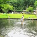 醒井養鱒場へ行ってきた!(米原市)ふれあい河川でチョウザメに触れあったり、マス釣りをしてその場で塩焼きも